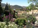 Cyn's Flower Garden