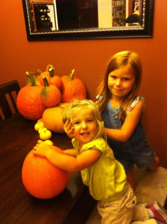 Organizing the Pumpkins