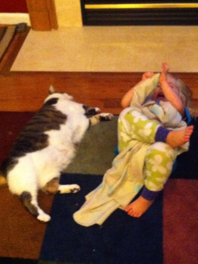 Ellie and the Fat Cat in front of the Fire